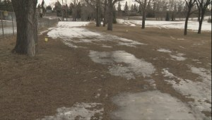 Calgary ski trails close as snowmaking equipment sits idle